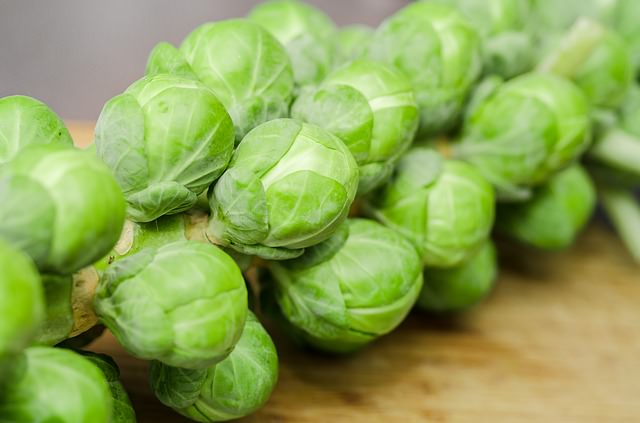 brussel sprouts growing on a stem
