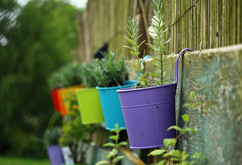 Ten Front Yard Landscaping Ideas on a Budget