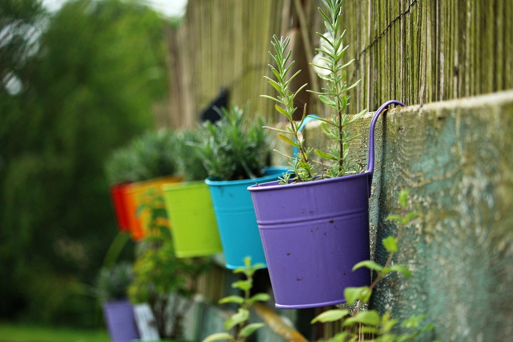 Cheap and Easy ways to landscape the front yard